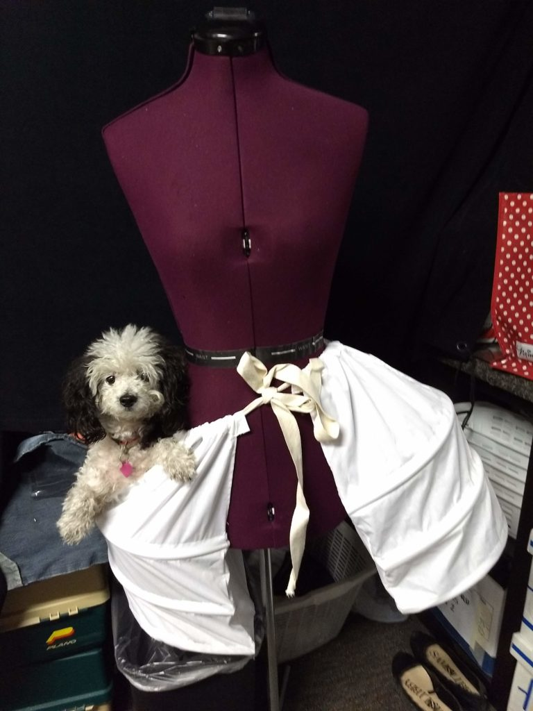 Dog dolly in pockets of dress